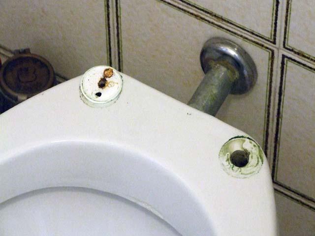 Fai da te casa sostituire la tavoletta copriwater parte prima - Tavoletta bagno ...